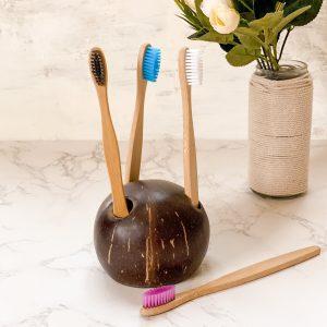 Coconut Shell Toothbrush Holder