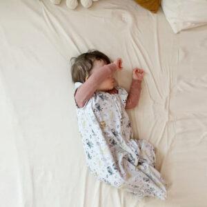 Tickle Tickle, Nap a Lil Organic Cotton Sleeping Bag - 1.0 TOG-Dreamy Owlette