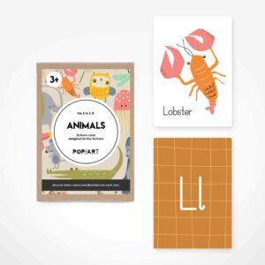 Flash Cards | Animals