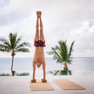 Cork Yoga Mat and Brick Combo