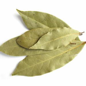 Kusha Original Indian Bay Leaf