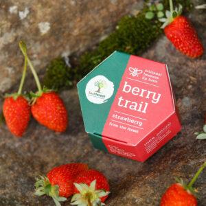 Last Forest Artisanal, Handmade Beeswax Lip Balm Strawberry