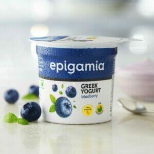 Greek Yogurt, Blueberry - 90 gm