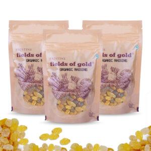 PRISTINE Fields of Gold Organic Raisins, 100gm Pack of 3