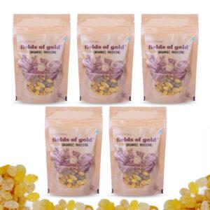 PRISTINE Fields of Gold Organic Raisins, 100gm Pack of 5