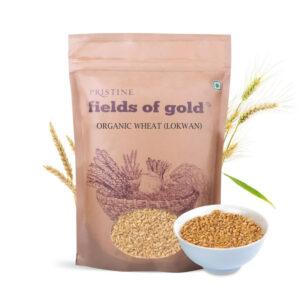 PRISTINE Fields of Gold Organic Wheat (Lokwan), 1kg Pack of 1