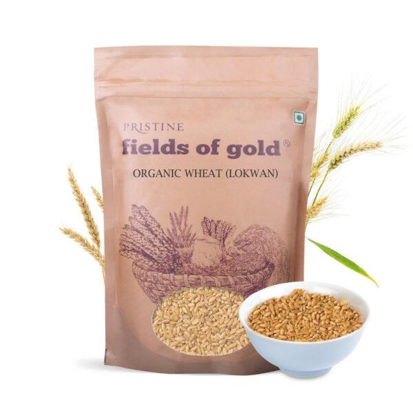 PRISTINE Fields of Gold Organic Wheat (Lokwan), 1kg Pack of 5